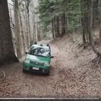 I Carabinieri in difesa della natura