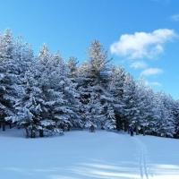 Escursioni Invernali