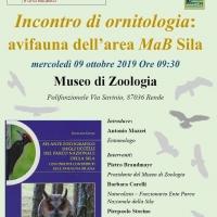Seminario incentrato sull'avifauna dell'area MaB Sila