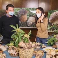I Funghi  della Sila cucinati a Camigliatello